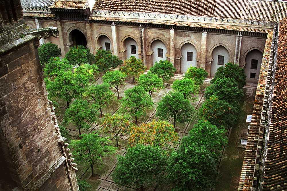 El Patio De Los Naranjos Y Biblioteca Colombina Catedral De Sevilla